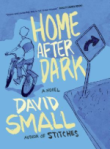 Home After Dark, by David Small